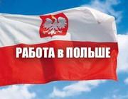 Фирма в Польше предлагает работу для Узбекистанцев